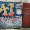 Graf15-147